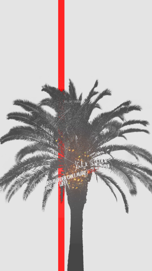 palm tree iphone wallpaper
